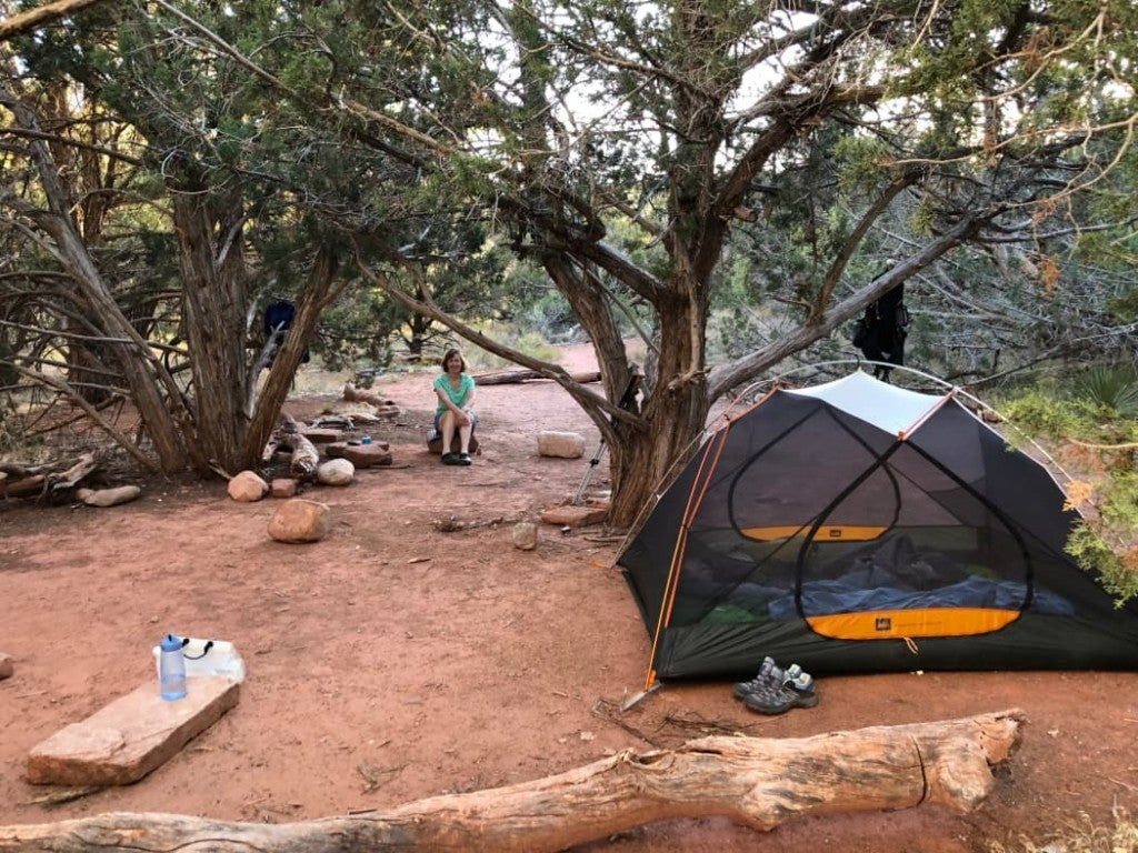 Woman in mint green sits on rock near her tent in a desert campsite tucked in grove of trees
