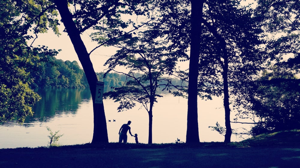 silhouette of man and child at wooded lakeside beach