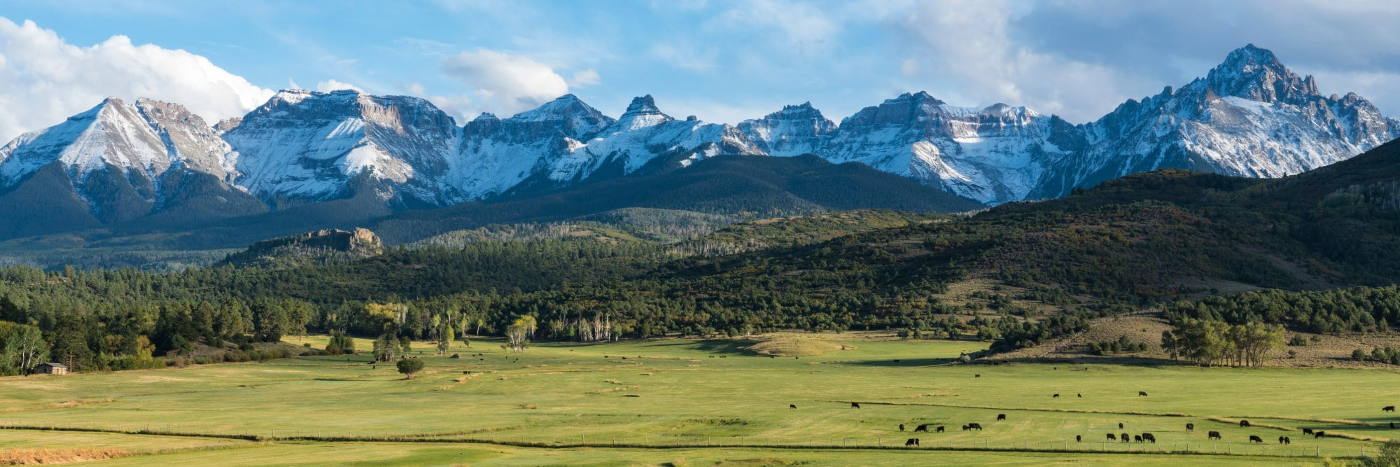 panoramic image of public lands in colorado featuring a mountain range and field