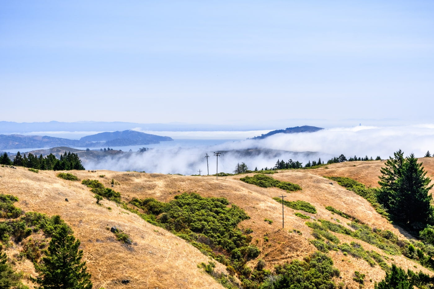 dry grassy hill in foreground with fog visible in background as it rolls over san francisco bay hills
