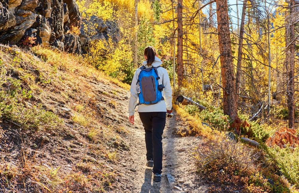 Woman hiking through aspens near Fish Lake, Utah