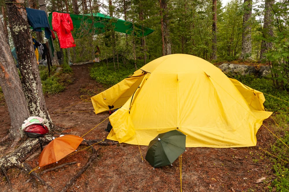 large yellow tent is staked to ground at wooded campsite surrounded by umbrellas and clothesline