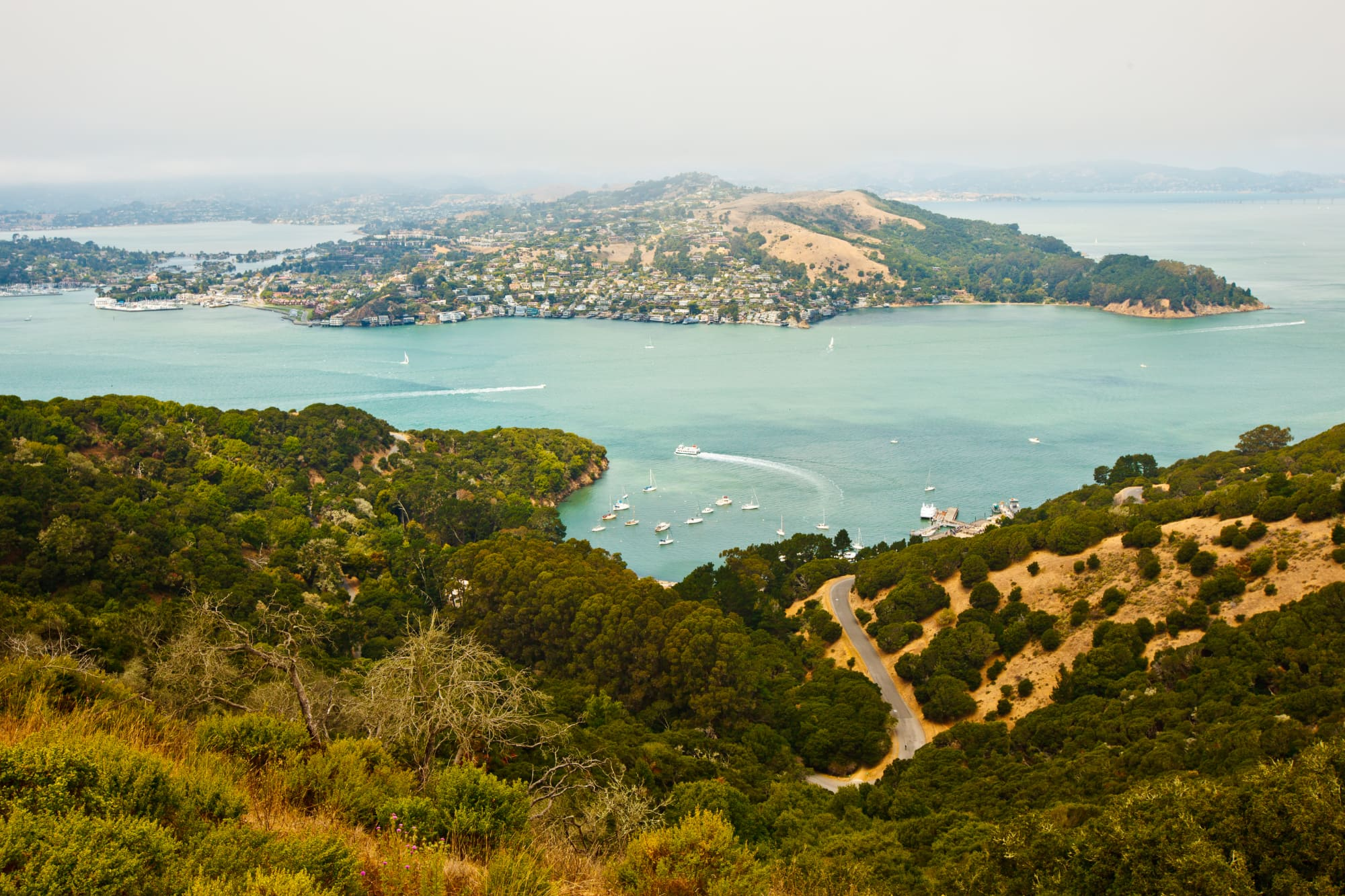a view of brush, rocks and a winding road on Angel Island overlooking the San Francisco Bay