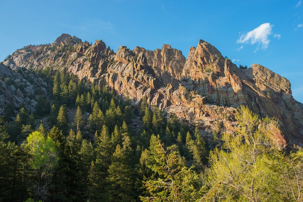 Jagged red and brown rocks above evergreen trees and summer foliage