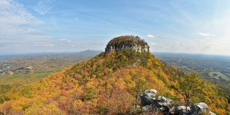 Panoramic view of Pilot Mountain, in North Carolina's Pilot Mountain State Park with fall foliage surrounding it