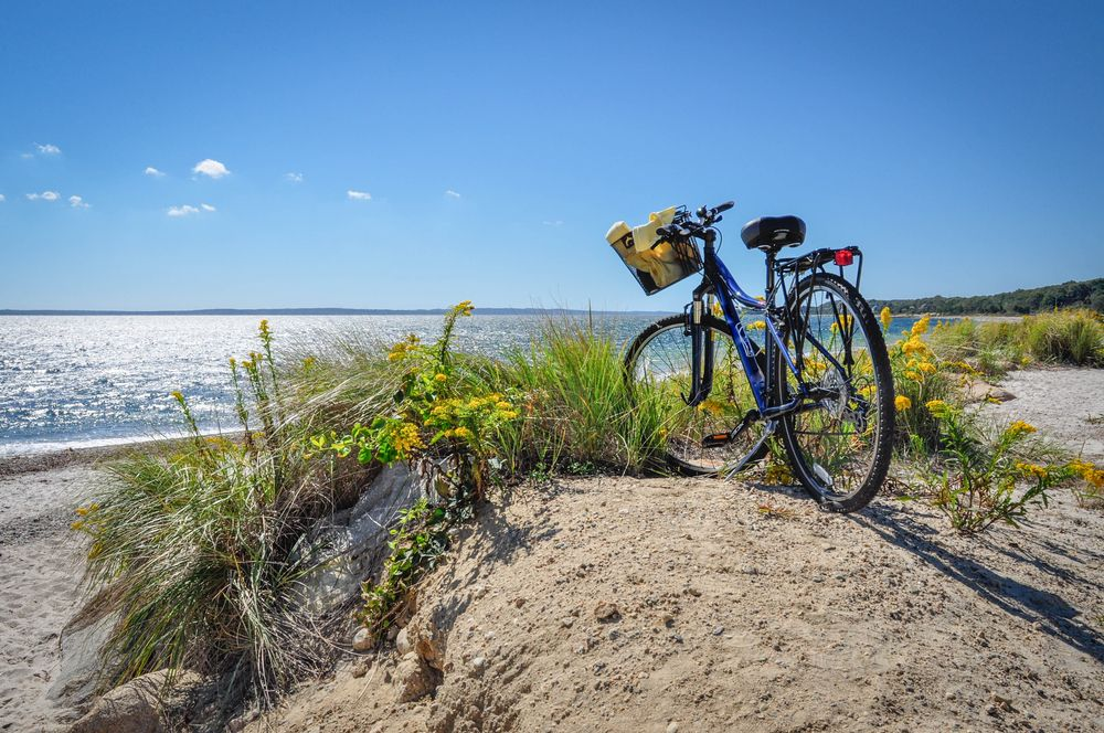 bike perched atop sand dune overlooking water in cape cod