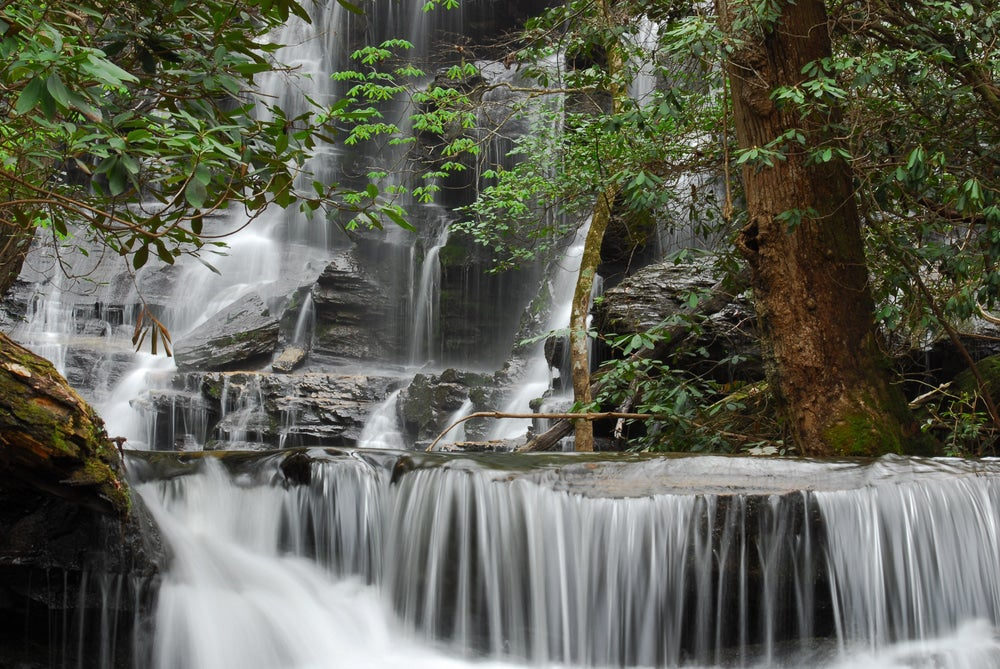 a steep series of waterfalls in SC flow around trees and rocks in the summer