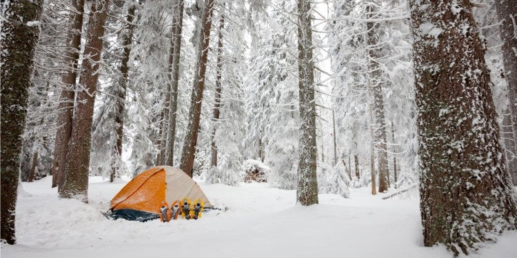 orange tent in snowy winter forest