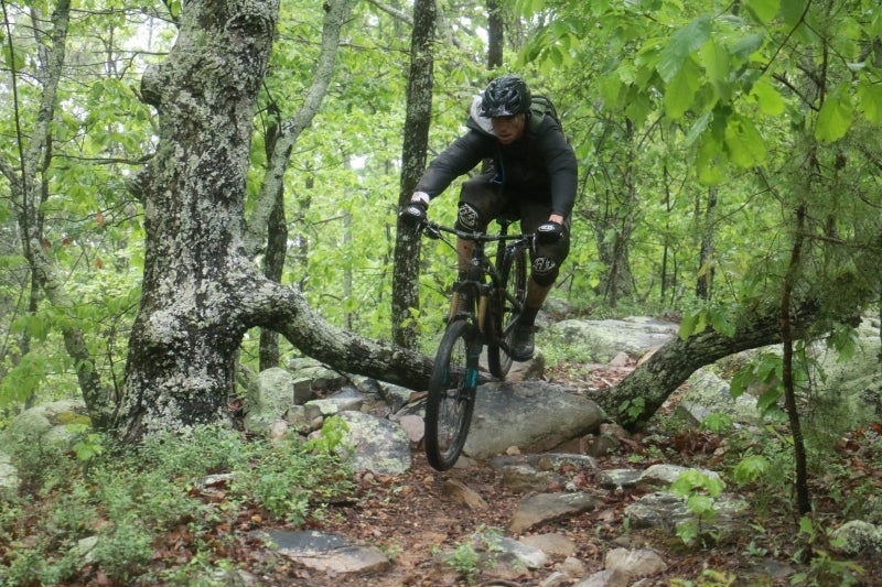 Man riding mountain bike over a tree branch through the forest during the 2017 Coldwater Mountain Enduro.