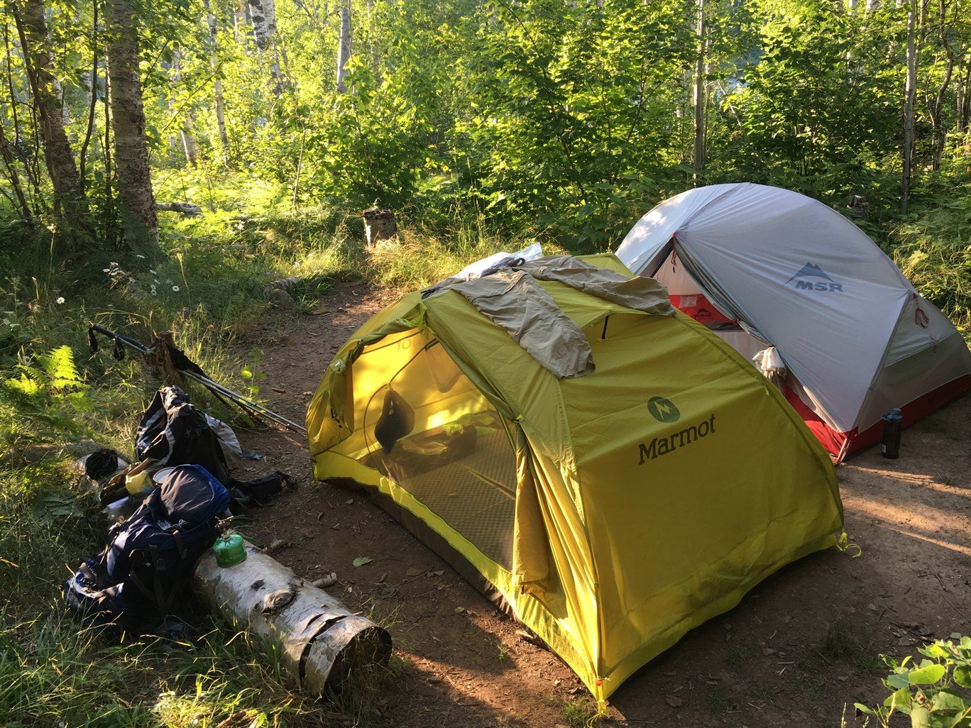 two tents set up beside one another in a wooded campsite as gear rests outside