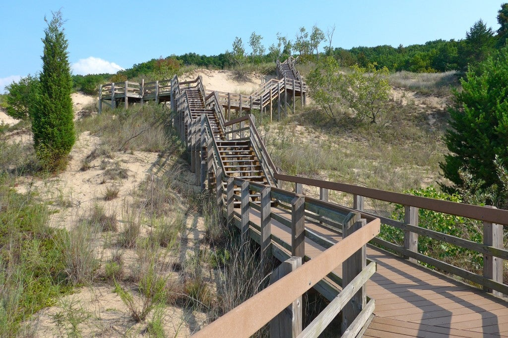 a wooden stairway on top of a grassy sand dune