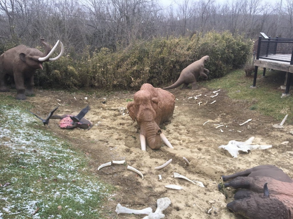 Fossil display at Big Bone Lick showing life size mammoths and buffalo decomposing into bones in a clearing where there is a little bit of snow on the ground.