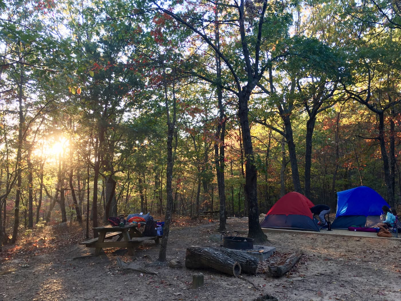 sun peeks through trees at wooded tent campsite with red and blue tents visible