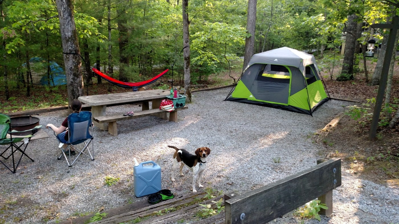 a campsite at lake powhatan with a tent, hammock, wooden picnic table, two camp chairs and a beagle.