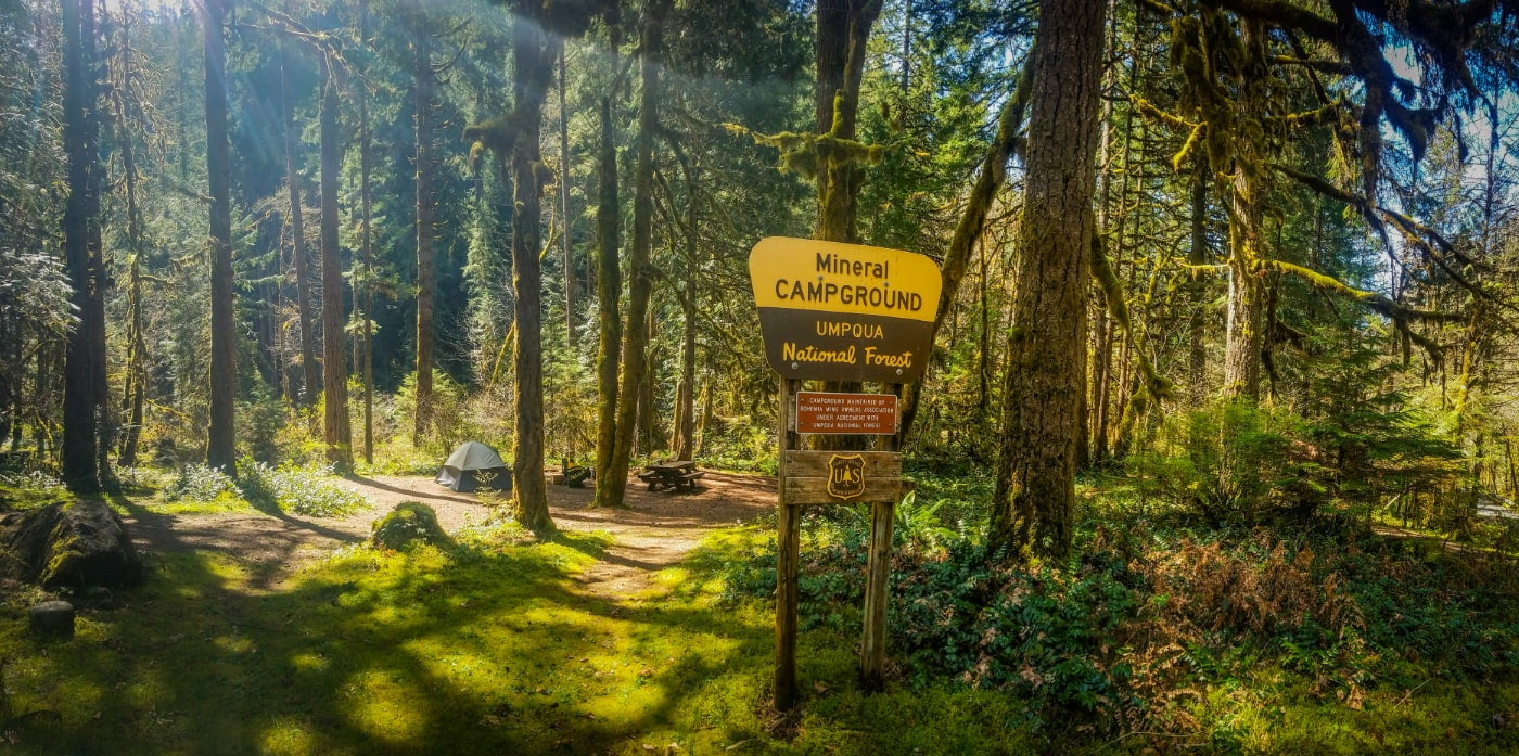 a wooden sign for mineral campground stands in front of a tent site surrounded by green mossy trees