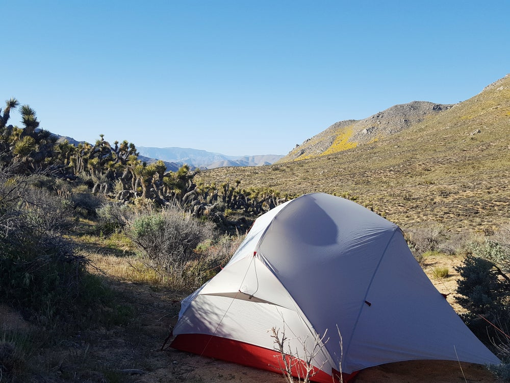 Grey and red tent setup in a desert landscape surrounded by cacti, brush, and rocky hills.