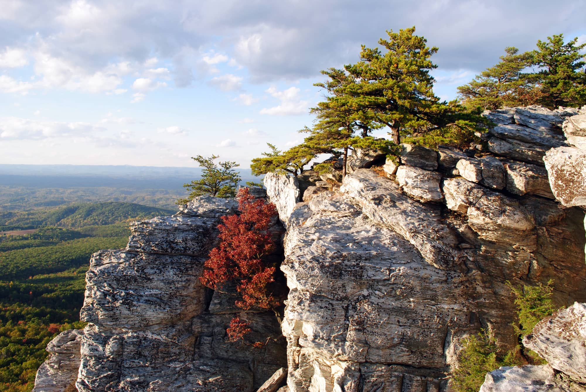 A cluster of trees on a stone cliff at Hanging Rock State Park, overlooking forested hills of North Carolina.