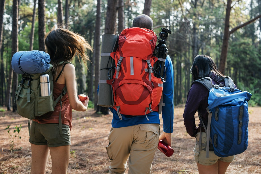 Three backpackers walking into the woods with gear and equipment strapped to their packs