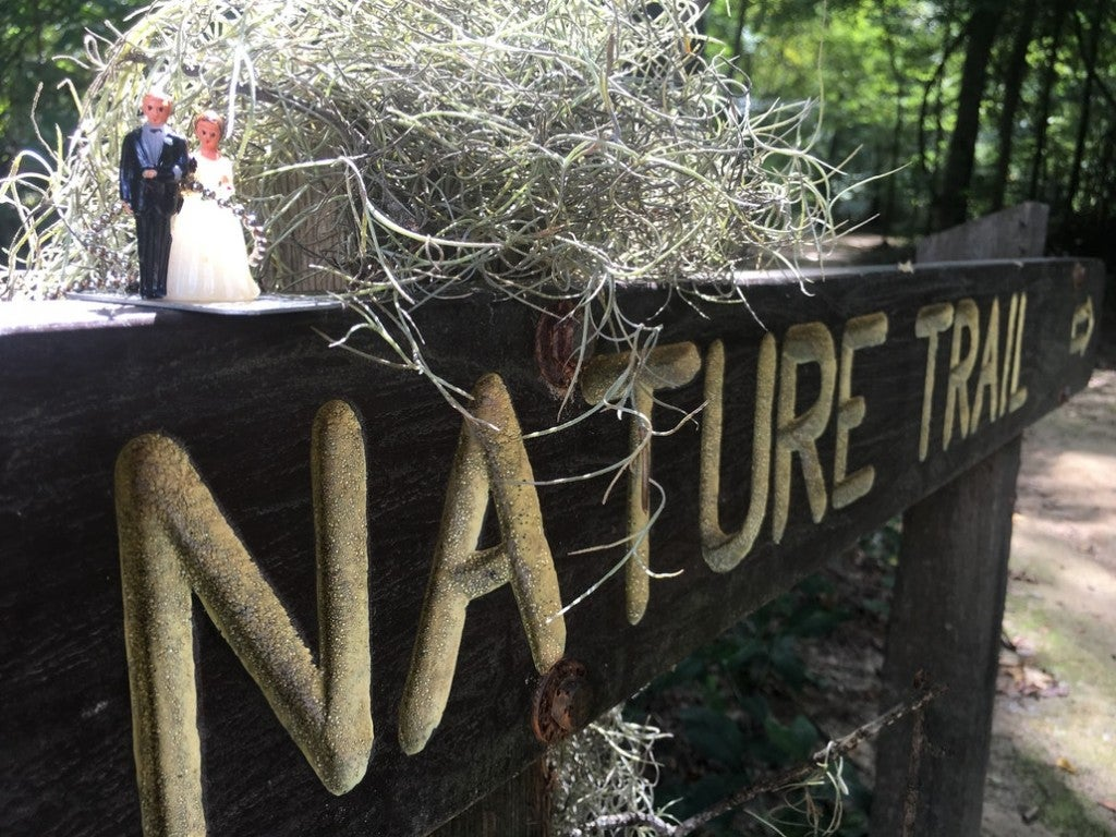 Close up of a 'married couple' figurine sitting next to moss on a wooden nature trail sign.