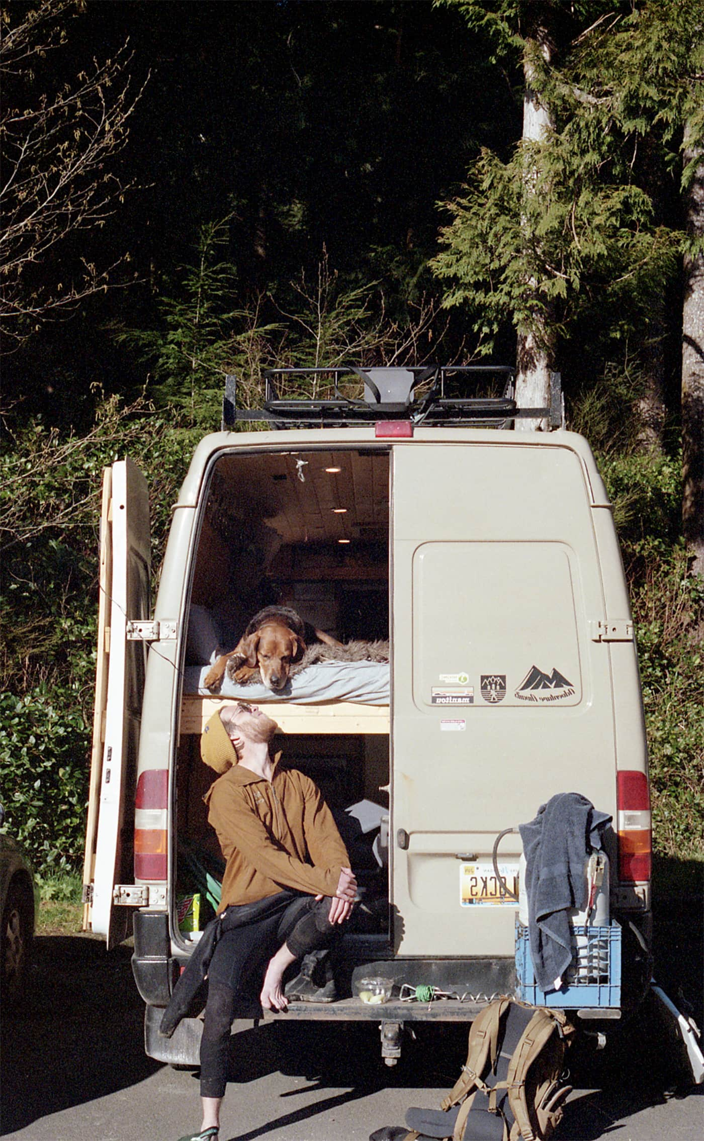 Man wearing a wetsuit sits on the tailgate of his sprinter van looking up at this dog.