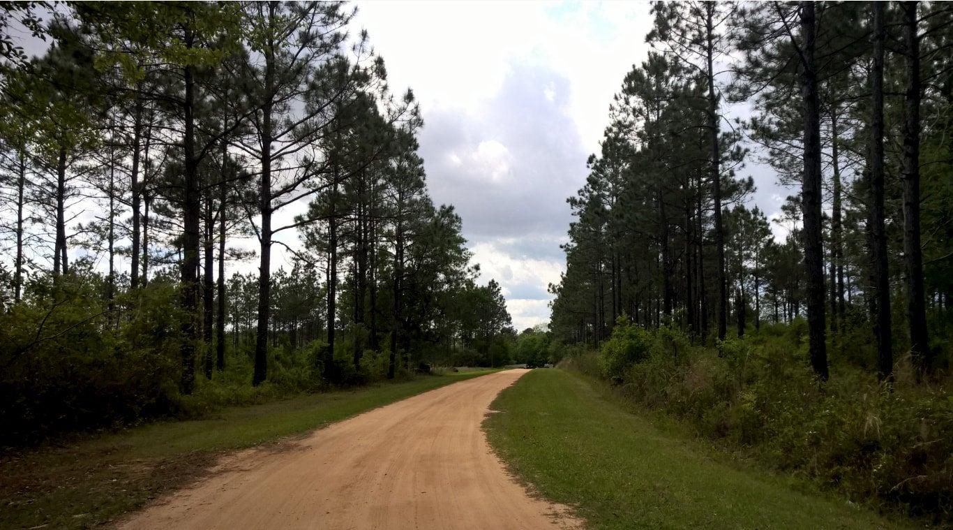 Hidden Lake entrance drive, dirt road.
