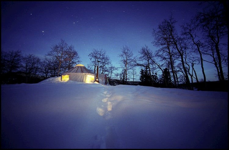 Yurt covered in snow in the middle of a forest with starry sky in background