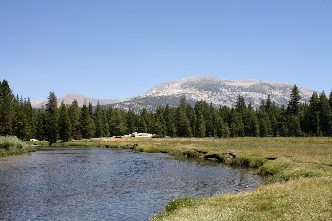 the Tuolumne River in yosemite national park running through the meadow below mountains.