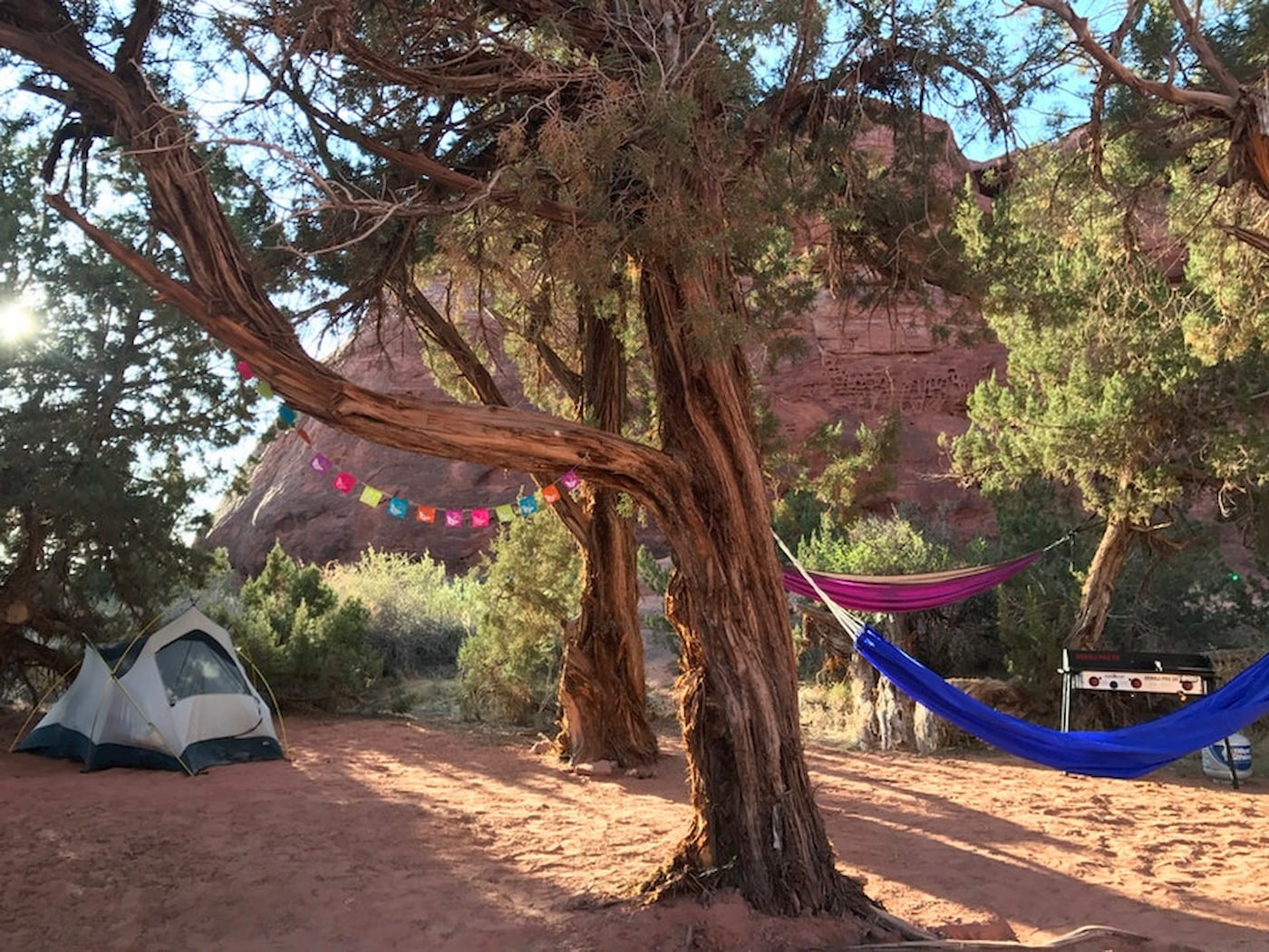 Tent, colorful hammocks and flags set up under a tree below a canyon.