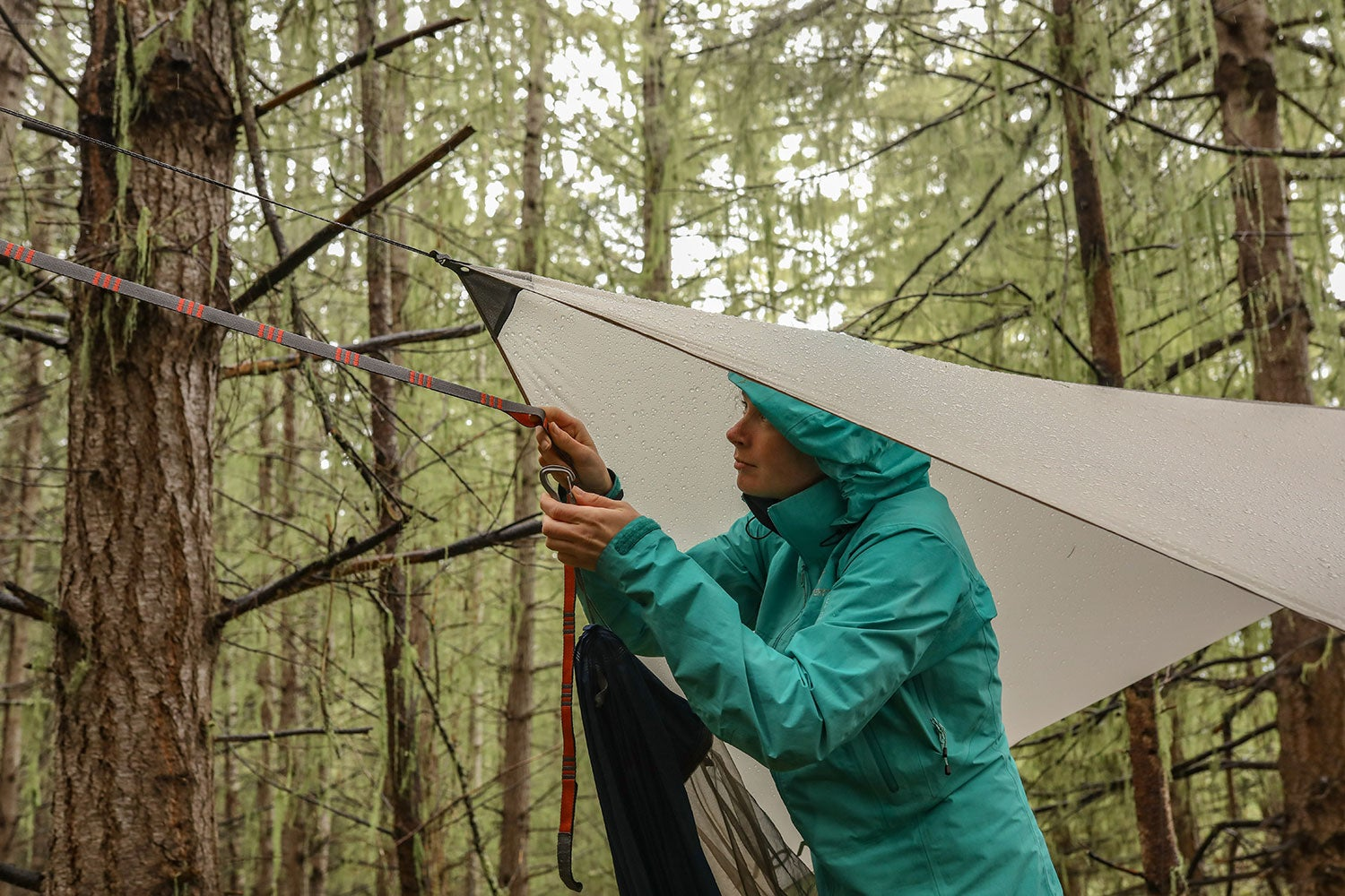 a woman ties a hammock and a rainfly to a tree in the rain in a forest