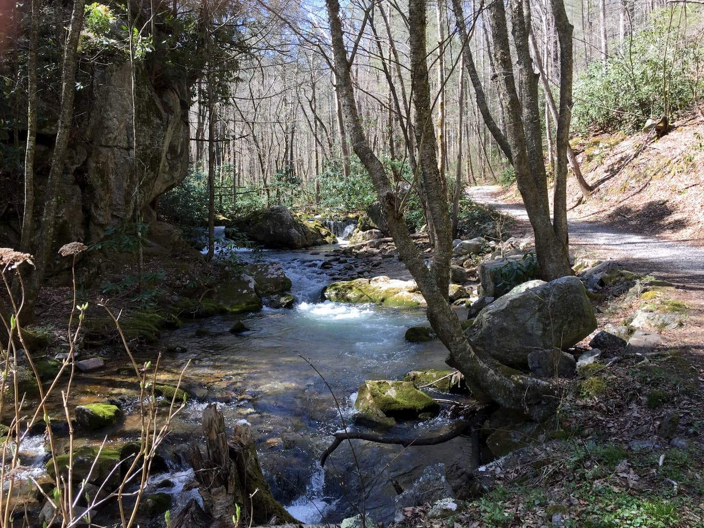 Small rushing river flowing through a rocky forested area in Rocky Fork State Park.