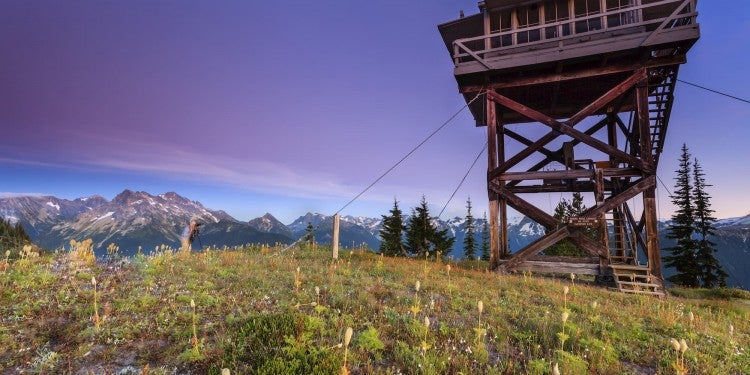 Fire tower with wild flowers in foreground and purple sky in background