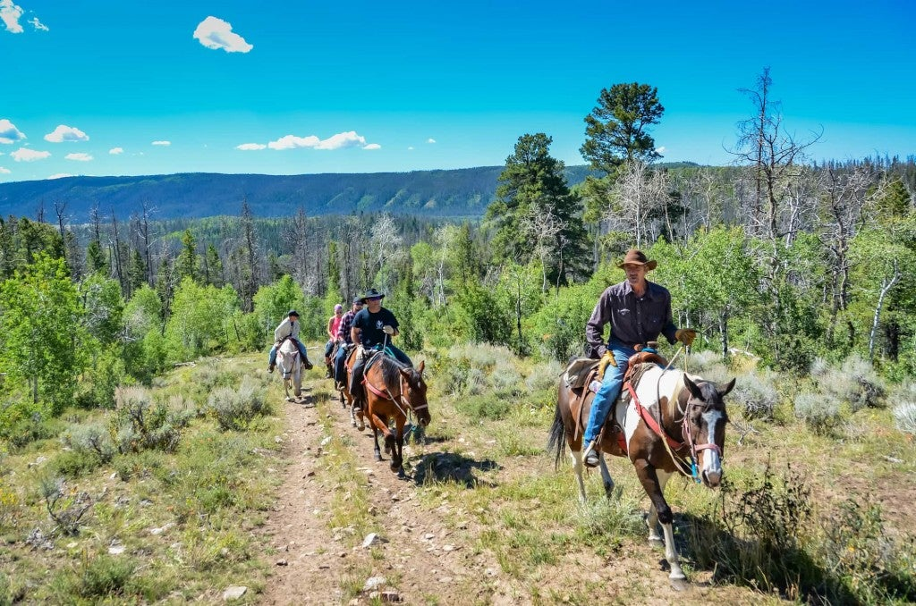 Group horseback riding on a mountain trail.