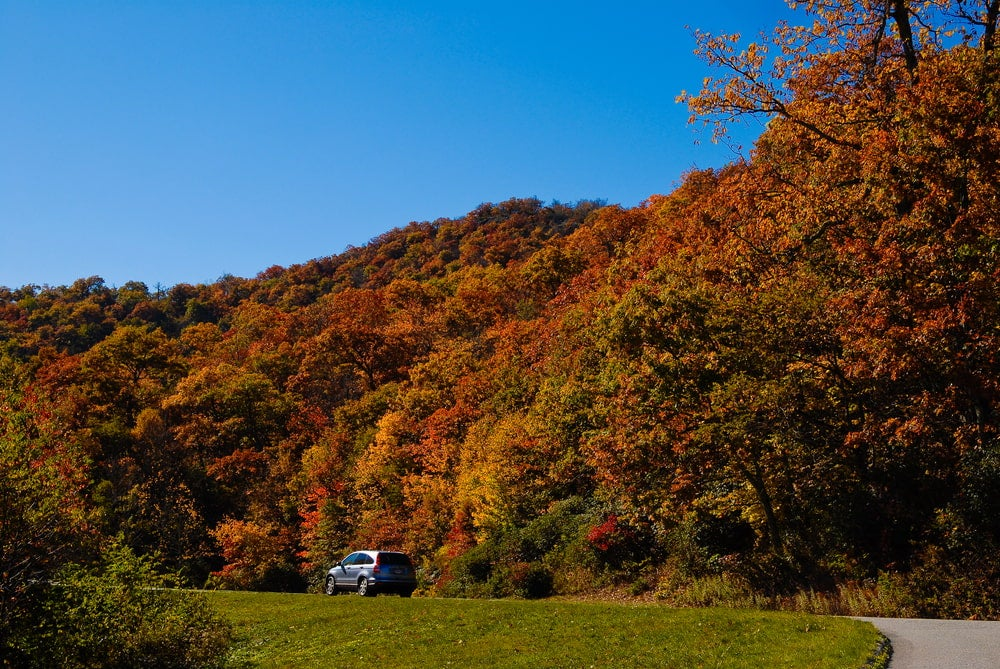 Wide angle view of car driving along Blue Ridge Parkway with colorful trees in background