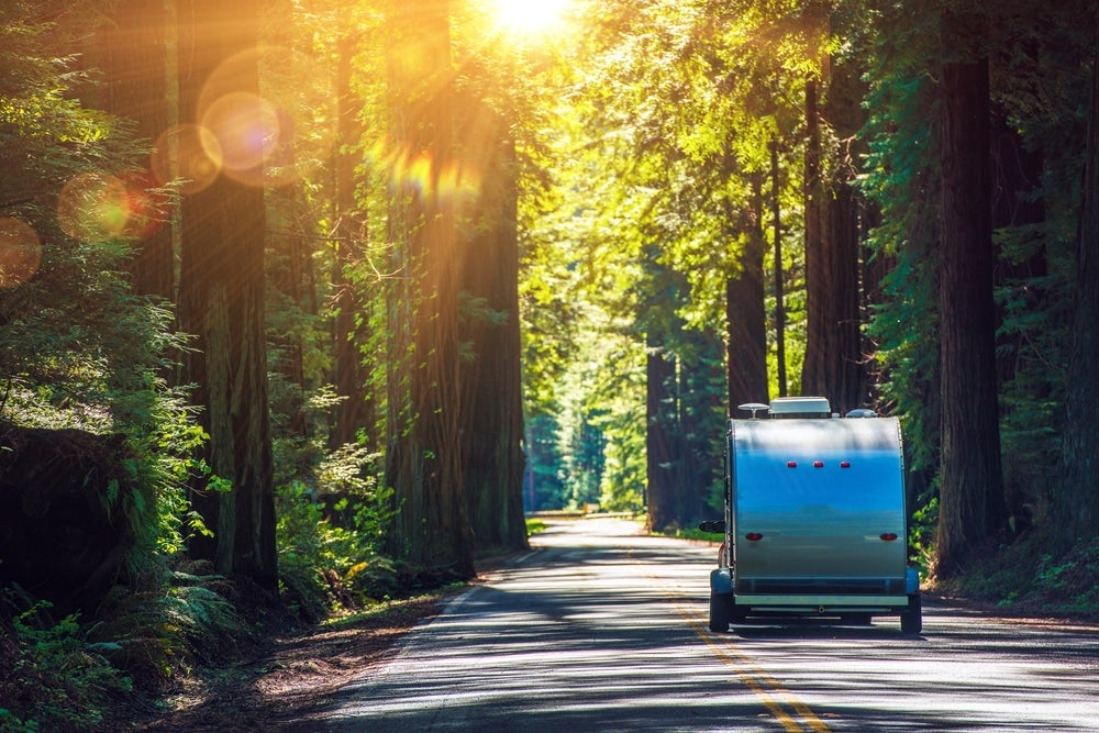 back view of camping trailer being towed down forest road as sun shines through trees