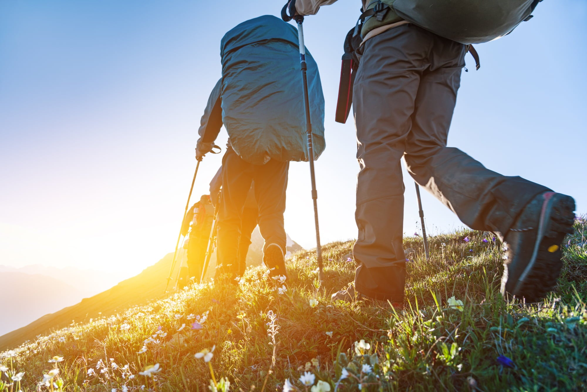 Ground view of three hikers making their way up a mountain trail through wildflowers with backpacking packs and trekking poles.