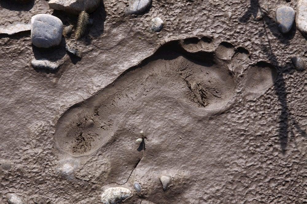 Footprint in the mud and rocks surrounding footprint