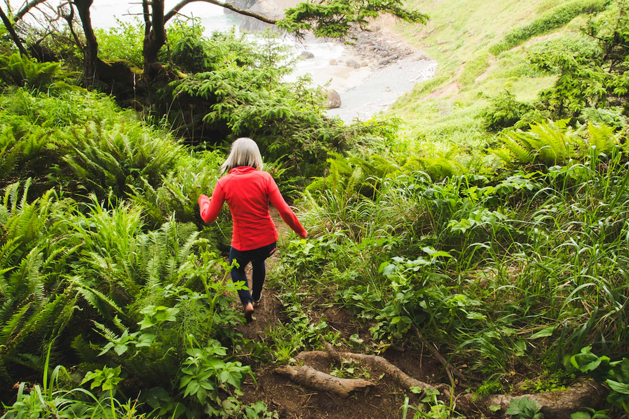 Women walking downhill through ferns and trees towards the ocean.