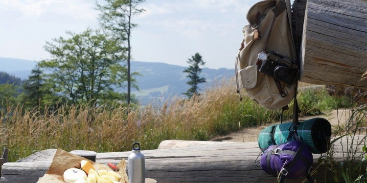 cheese plate resting on log beside backpacking gear on mountainside trail