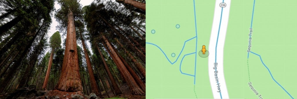 California redwoods and google map with streetview icon