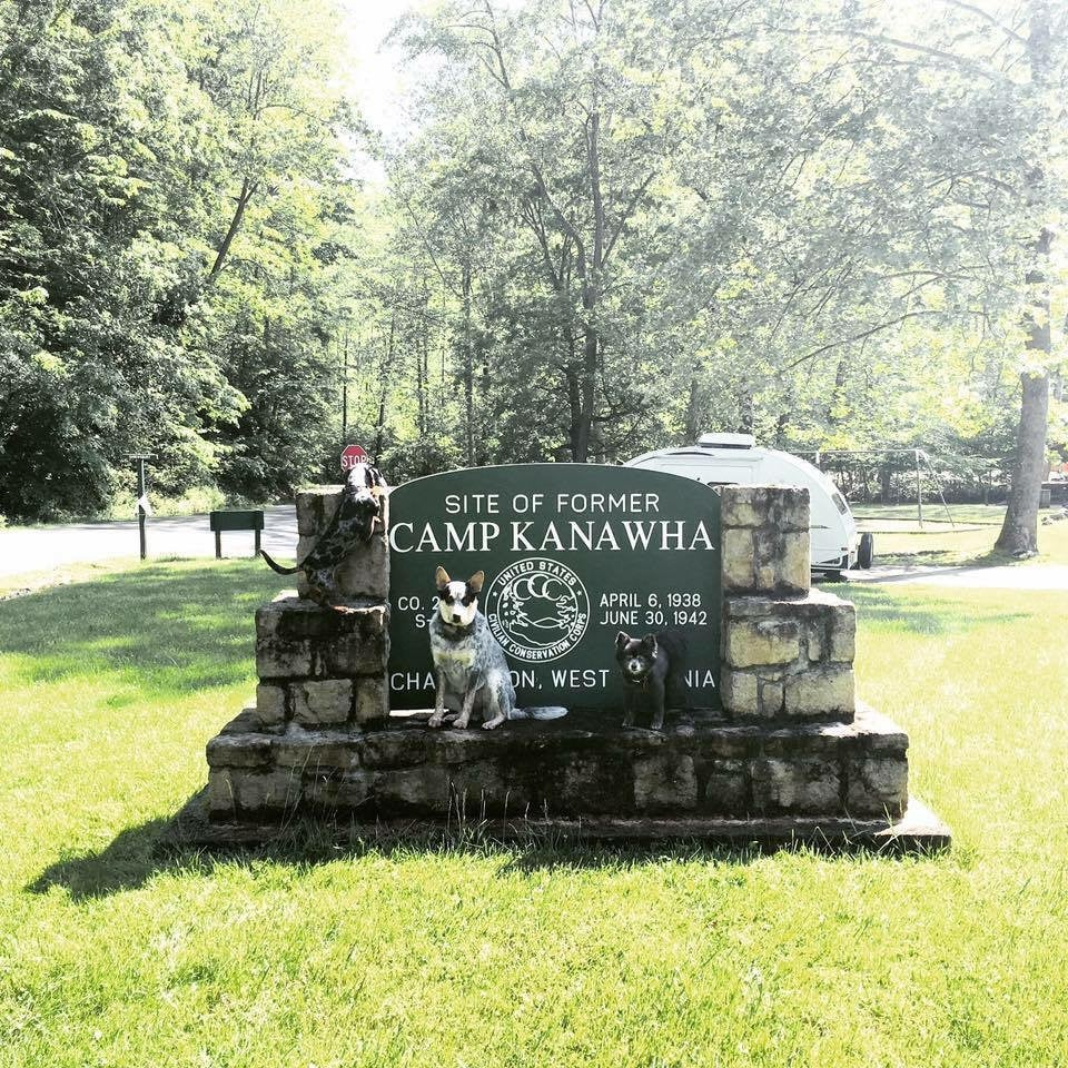 Three dogs sitting on Camp Kanawha sign with forest in background