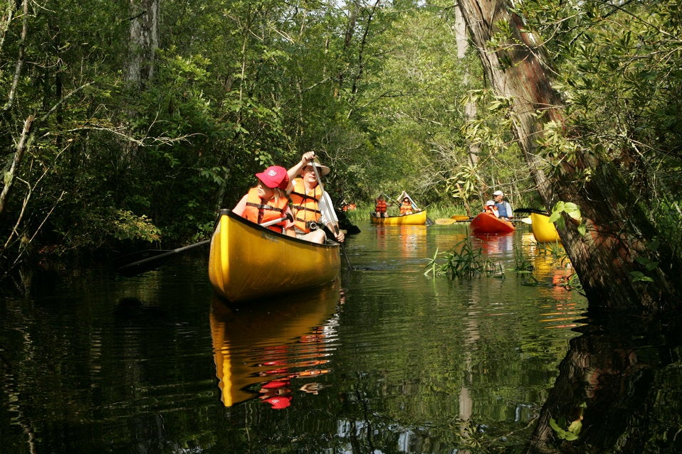 Family kayaking on a river with trees next to river