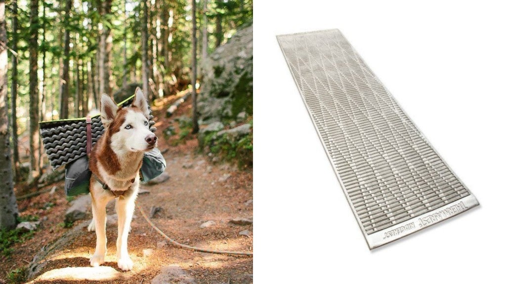 (left) husky wearing pack on trail with pine forest in the background, (right) product shot of thermarest foam sleeping pad