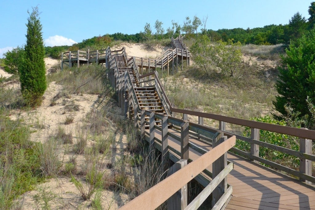 a wooden stairway leads up a sand dune into a forest