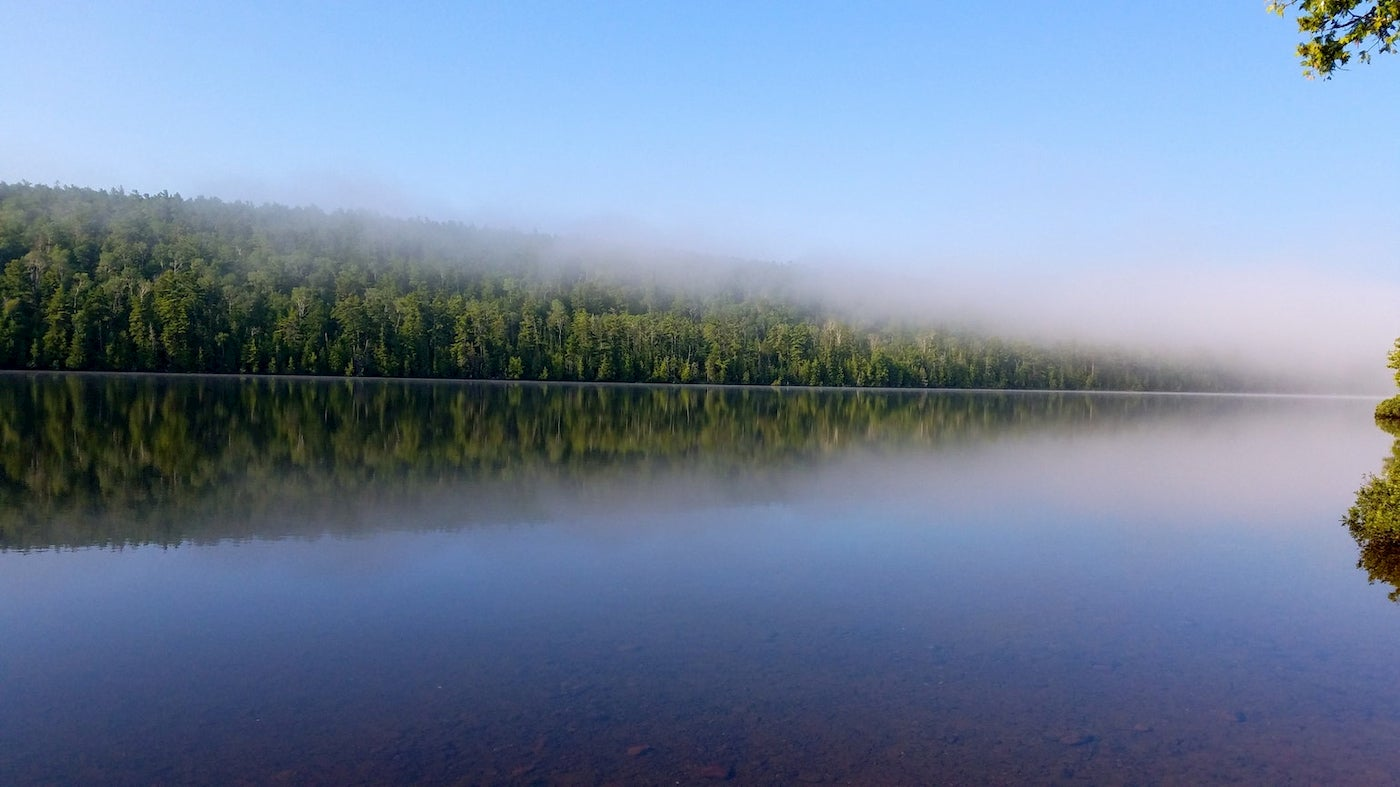 Fog rolling in atop calm, tree-lined waters