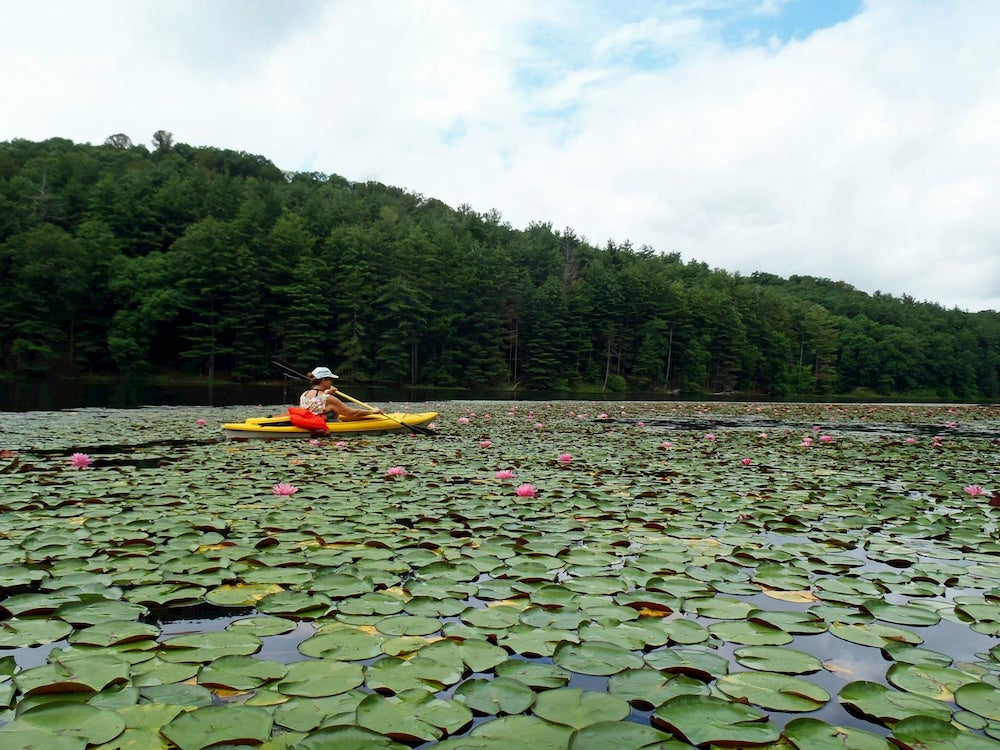 Woman kayaking in a lake of lily pads