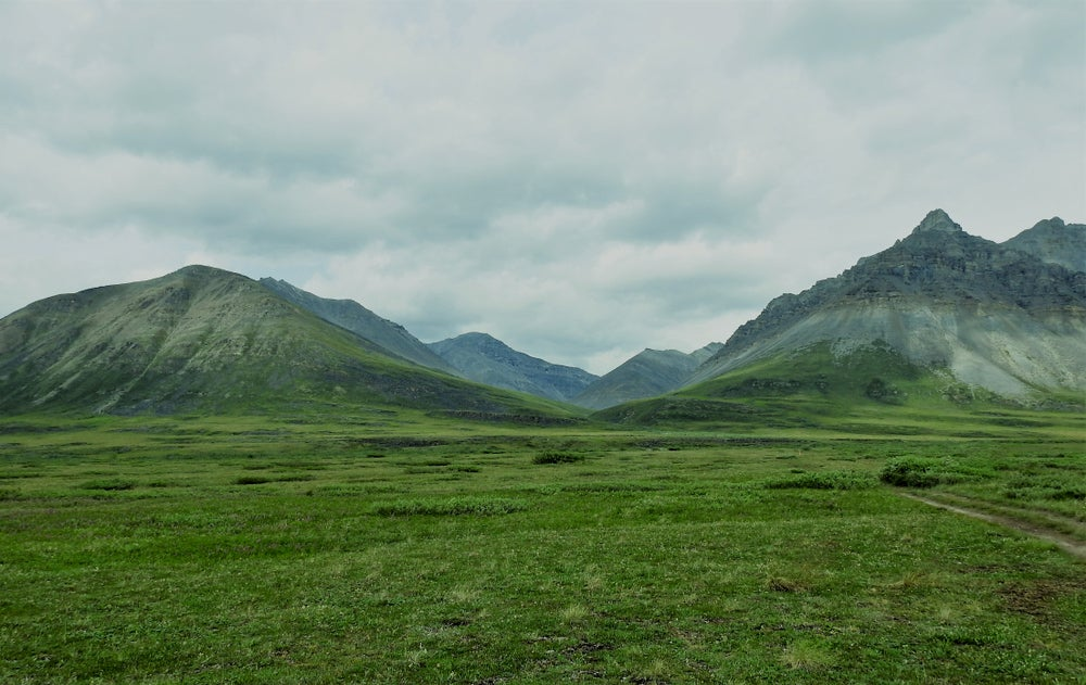 The Brooks Mountain range and alpine fields in Gates of the Arctic National Park.