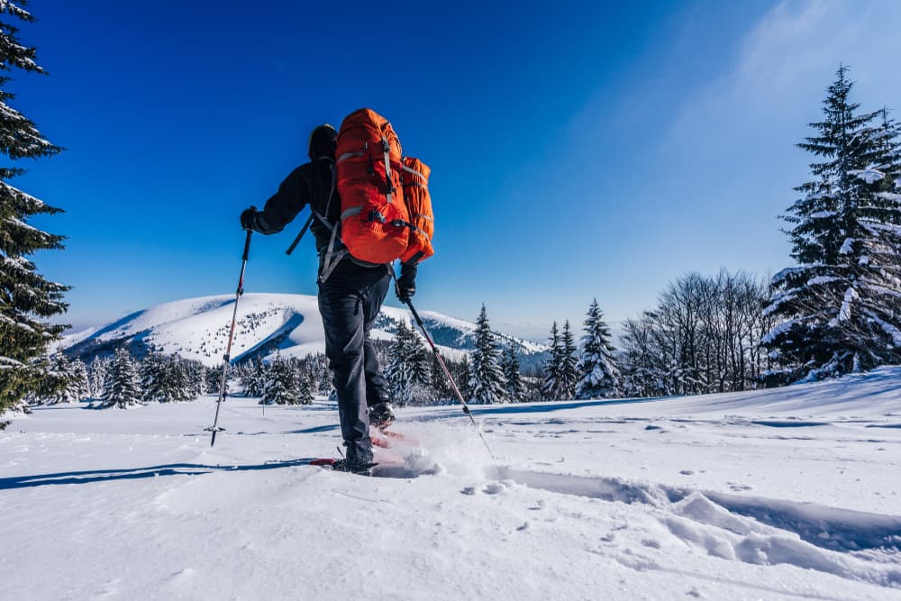backpacker snowshoes through deep snow towards pine trees and mountain in the distance