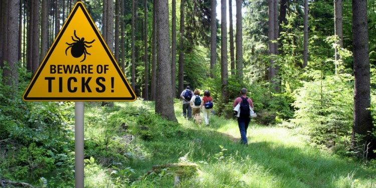 """Beware of Ticks' sign beside hiking trail in the forest."