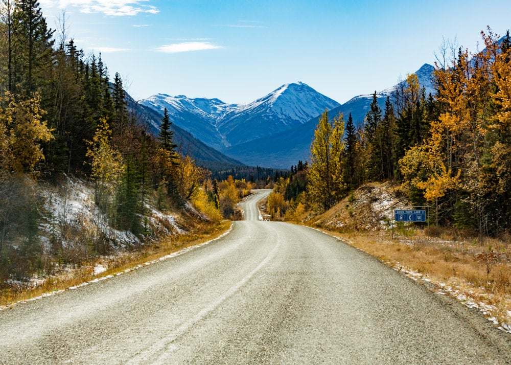 Road running though mountains with yellow trees and mountains in background used for driving to Alaska