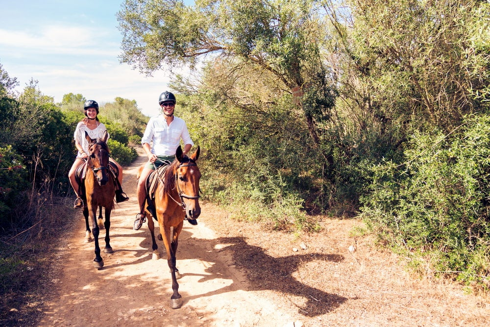 Two people riding horses on a trail next to woodlands